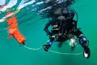 Rebreather diver with SMB