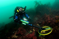 Rebreather diver with metal detector