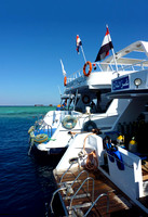 Red Sea dive boats