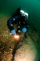 Diver discovers peat